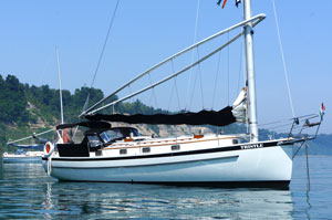 Thistle, a Nonsuch 36